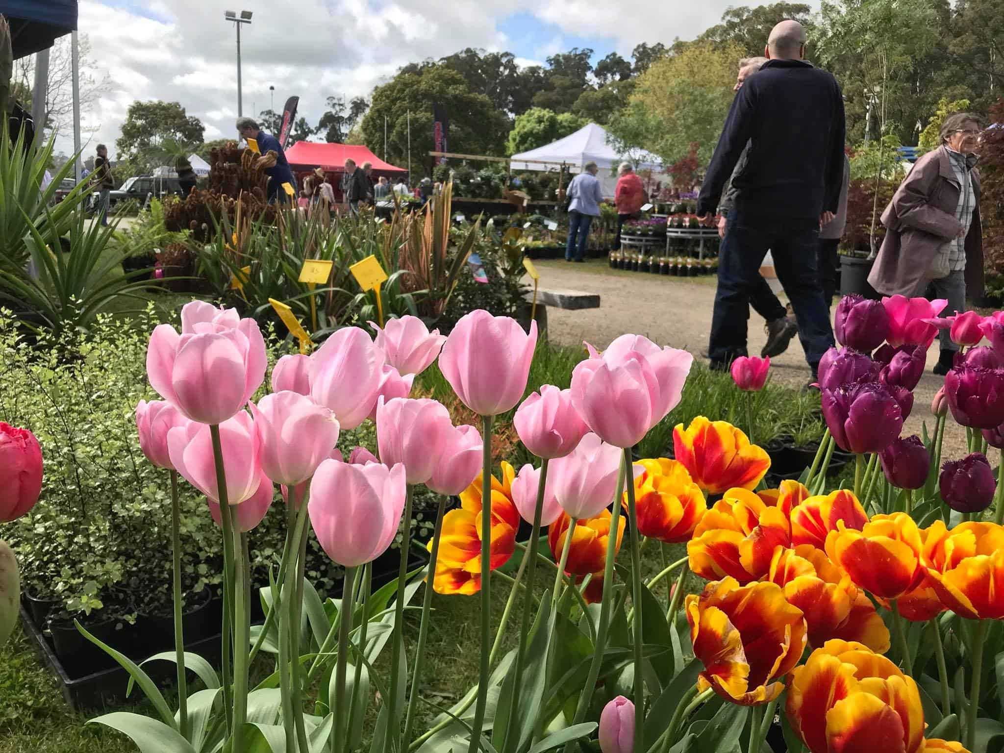 Markets at Lardner Park